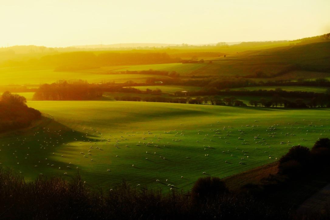 england-krajobraz